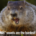 Can a Groundhog Transform Your Singing?